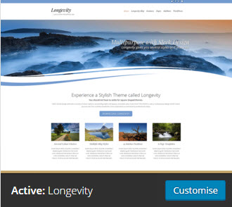 theme page customize
