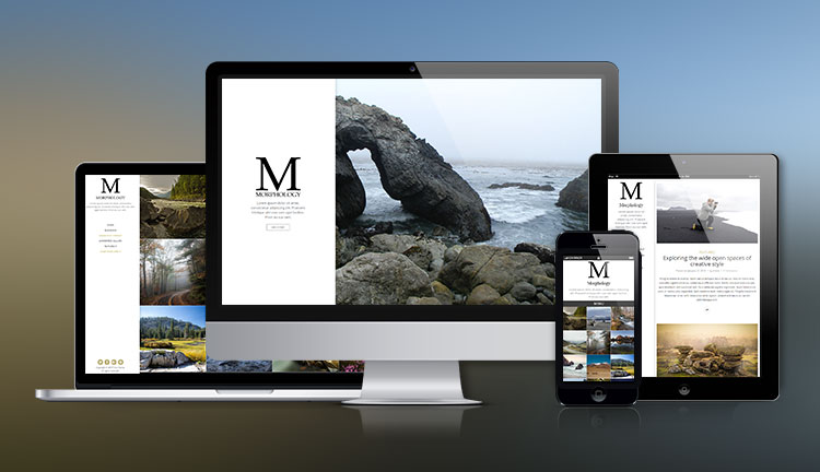 Morphology Image Gallery WordPress Theme