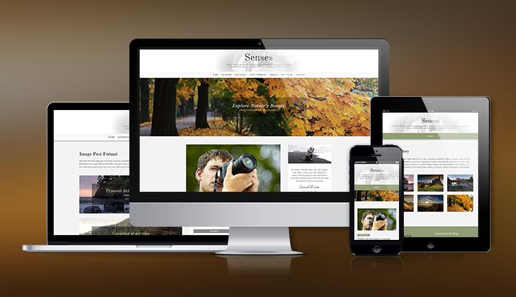 Senses Simple Portfolio WordPress Theme