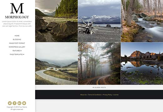 image posts category