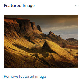 gallery featured image